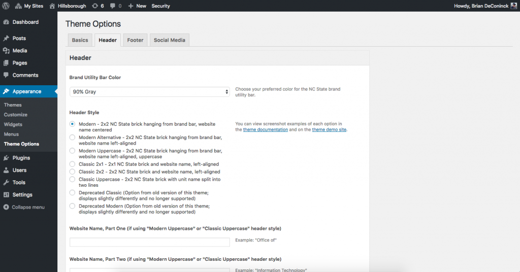 Using the Theme Options Panel to make changes to your website and follow links to documentation