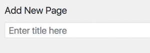 Screenshot of title input field